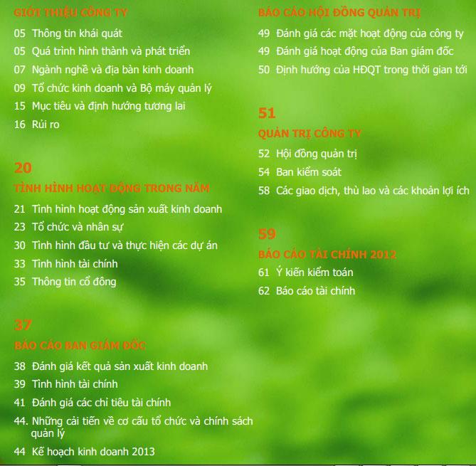 bao-cao-thuong-nien-2012-noi-dung